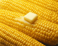 Butter Melting on Corn on the Cob