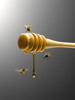 Bees flying around honey dipper dripping with honey