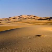 Sand dunes in desert landscape