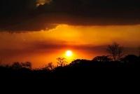 セレンゲティ国立公園に昇る朝日