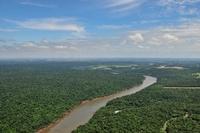 イグアス川 11069009212| 写真素材・ストックフォト・画像・イラスト素材|アマナイメージズ