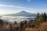朝の富士山 11069011744| 写真素材・ストックフォト・画像・イラスト素材|アマナイメージズ