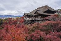 秋の清水寺