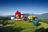 台湾国際熱気球フェスティバル