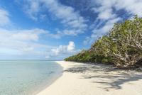 石垣島の海 11069014876| 写真素材・ストックフォト・画像・イラスト素材|アマナイメージズ