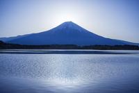 田貫湖と富士山 11069016403| 写真素材・ストックフォト・画像・イラスト素材|アマナイメージズ