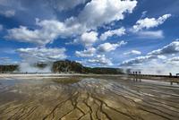 イエローストーン国立公園 11069017402| 写真素材・ストックフォト・画像・イラスト素材|アマナイメージズ