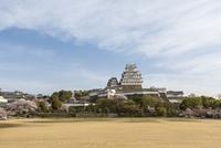 姫路城、兵庫県、姫路市、世界遺産、サクラ、日本百名城