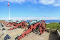 クロンボー城の大砲