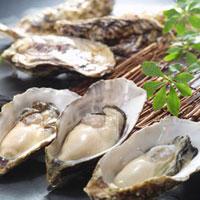 生牡蠣 11070000136| 写真素材・ストックフォト・画像・イラスト素材|アマナイメージズ