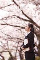 新入社員女性横顔と桜