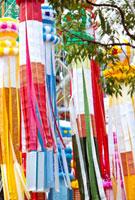 仙台七夕まつり 宮城県 11070004855| 写真素材・ストックフォト・画像・イラスト素材|アマナイメージズ