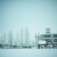 雪積もる公園の東屋と街路樹とビル