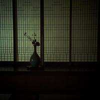 和室に活けた花 11070009523| 写真素材・ストックフォト・画像・イラスト素材|アマナイメージズ