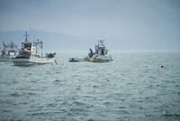 漁船 11070009657| 写真素材・ストックフォト・画像・イラスト素材|アマナイメージズ