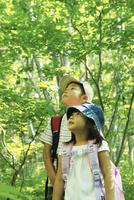 木々を見上げる男の子と女の子