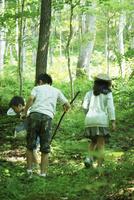 森の中を歩く3人の子供達 11070009955| 写真素材・ストックフォト・画像・イラスト素材|アマナイメージズ
