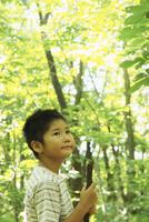 木々を見上げる男の子