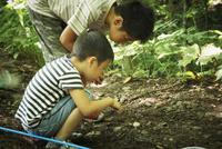 昆虫採集をする2人の男の子 11070009960| 写真素材・ストックフォト・画像・イラスト素材|アマナイメージズ