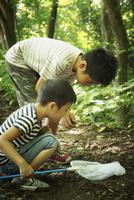昆虫採集をする2人の男の子
