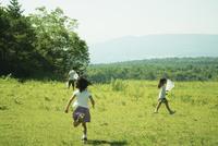 昆虫採集をする4人の子供達 11070009966| 写真素材・ストックフォト・画像・イラスト素材|アマナイメージズ