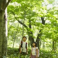 木を見上げる男の子と女の子