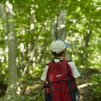 リュックサックを背負った男の子の後姿 11070010406| 写真素材・ストックフォト・画像・イラスト素材|アマナイメージズ