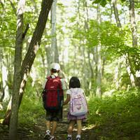 森林を歩く男の子と女の子の後姿