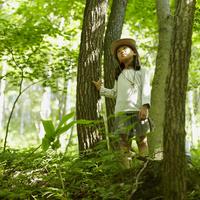 木々を見上げる女の子 11070010427| 写真素材・ストックフォト・画像・イラスト素材|アマナイメージズ