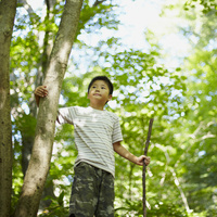木の枝を持つ男の子 11070010435| 写真素材・ストックフォト・画像・イラスト素材|アマナイメージズ