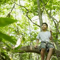 木の枝に座る男の子 11070010437| 写真素材・ストックフォト・画像・イラスト素材|アマナイメージズ