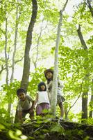森林で下を覗く3人の子供達 11070010442| 写真素材・ストックフォト・画像・イラスト素材|アマナイメージズ