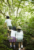 森林を歩く3人の子供達 11070010443| 写真素材・ストックフォト・画像・イラスト素材|アマナイメージズ