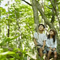 木の枝に座る男の子と女の子 11070010445| 写真素材・ストックフォト・画像・イラスト素材|アマナイメージズ