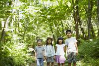 森林に佇む4人の子供達 11070010447| 写真素材・ストックフォト・画像・イラスト素材|アマナイメージズ