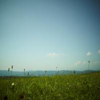 草原と青空 11070010469| 写真素材・ストックフォト・画像・イラスト素材|アマナイメージズ