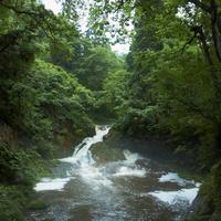 渓流 11070010502| 写真素材・ストックフォト・画像・イラスト素材|アマナイメージズ