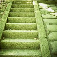 石の階段 11070010516| 写真素材・ストックフォト・画像・イラスト素材|アマナイメージズ