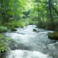 渓流 11070010924| 写真素材・ストックフォト・画像・イラスト素材|アマナイメージズ