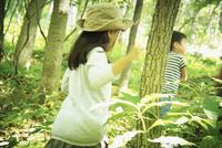 森林を歩く女の子と男の子