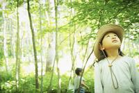 木々を見上げる女の子 11070011009| 写真素材・ストックフォト・画像・イラスト素材|アマナイメージズ