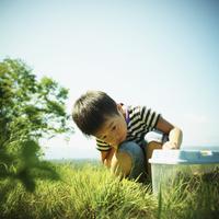 虫かごを見る男の子 11070011016| 写真素材・ストックフォト・画像・イラスト素材|アマナイメージズ