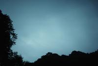 夜明けの森と空