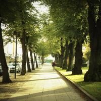 エスプラナーディ通り フィンランド 11070012735| 写真素材・ストックフォト・画像・イラスト素材|アマナイメージズ