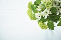 グリーンと白の花束