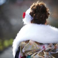 振袖姿の女性の後ろ姿 11070016004| 写真素材・ストックフォト・画像・イラスト素材|アマナイメージズ
