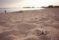 砂浜 11070016525| 写真素材・ストックフォト・画像・イラスト素材|アマナイメージズ