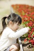 花壇と女の子