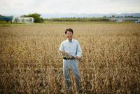大豆畑の笑顔の農夫 11070018491| 写真素材・ストックフォト・画像・イラスト素材|アマナイメージズ