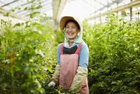 温室のバラの中に立つ笑顔の農婦
